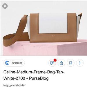 1f0cb44a11dd 100% AUTHENTIC Celine Frame bag Tan pristine